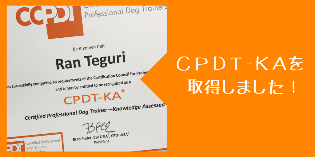 CPDT-KAを取得しました